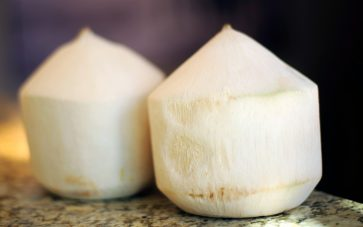 photo of coconuts with the shells removed - learn the benefits of coconut